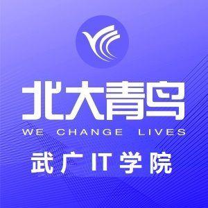 武汉北大青鸟IT培训学校