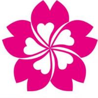 宁波樱花日语
